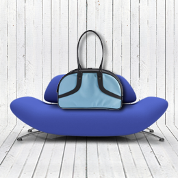 blue-Roxy-airline-approved-dog-carrier