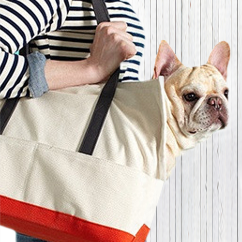 Anvas Boat Tote Carrier For Small Dog
