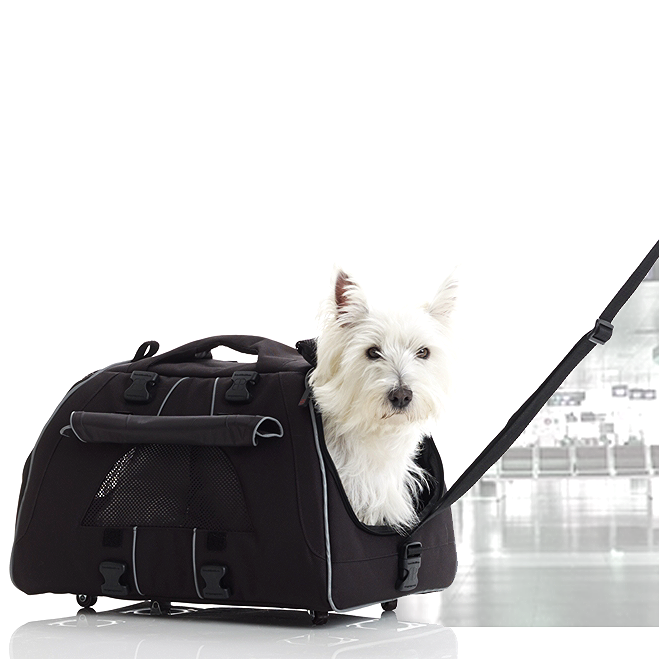 rolling jet setter dog carrier